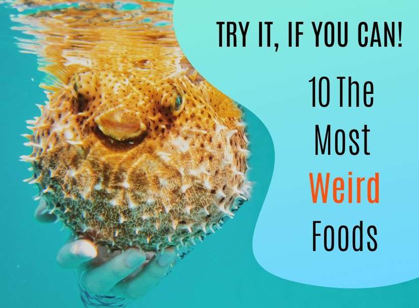 Try It, If You Can! 10 The Most Weird Foods